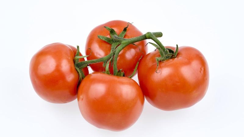 Tomaten vorziehen: Darauf müssen Sie achten