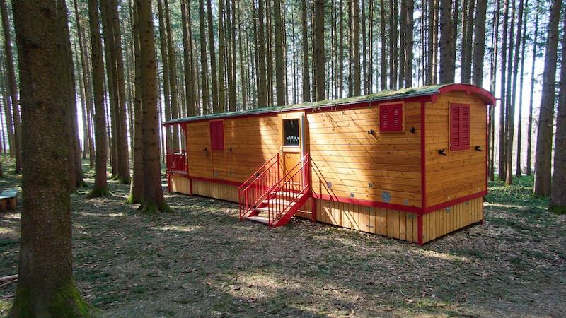 Waldkindergarten: So gehen Kinder hier auf die Toilette