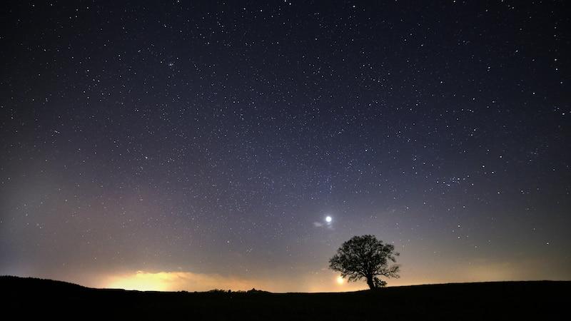 Welche Sternzeichen gibt es? - Das steckt hinter den Tierkreiszeichen