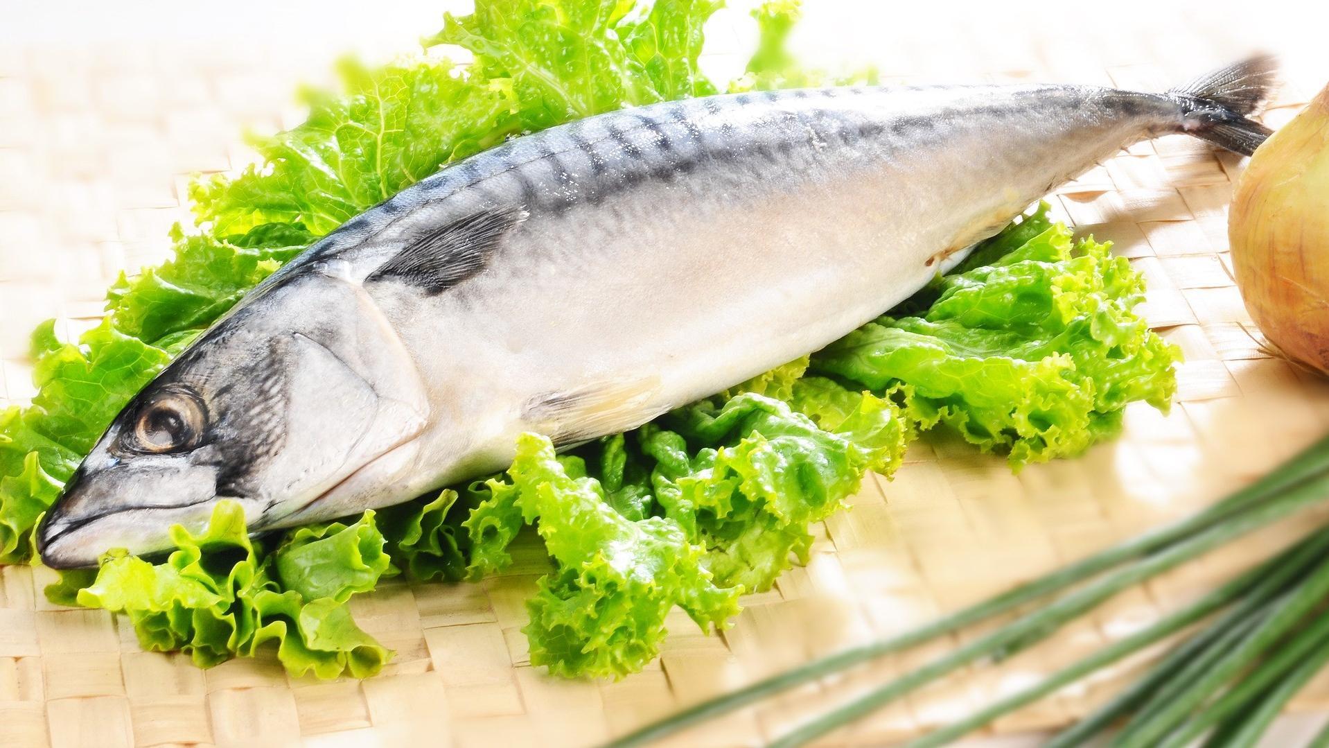 Bei der Metabolic Diät stehen eiweißreiche Lebensmittel im Vordergrund.