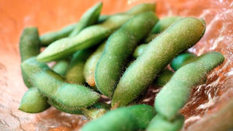 Sojabohnen im eigenen Garten anbauen - so funktioniert es