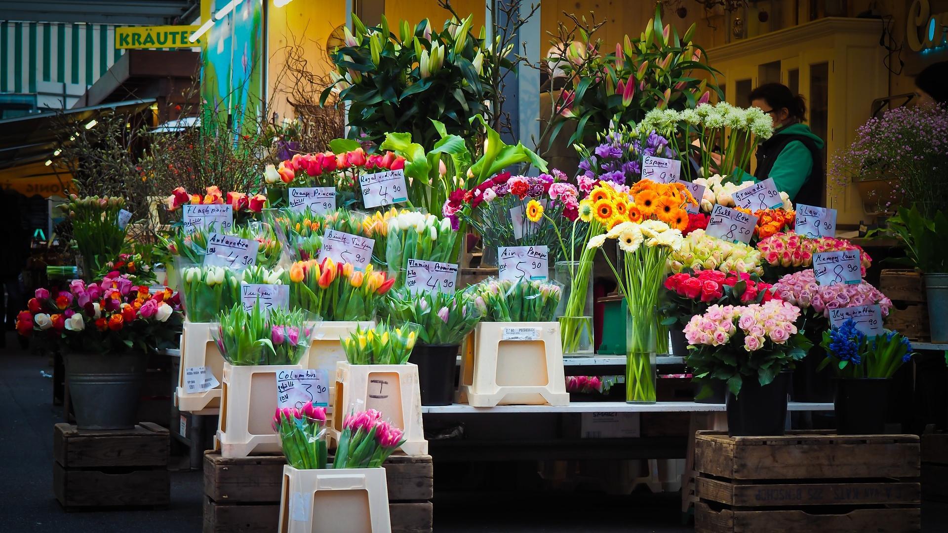 Fairtrade Blumen werden unter höheren sozialen und ökologischen Standards angebaut als Blumen aus konventionellem Anbau.