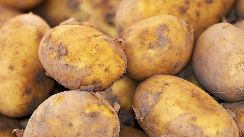 Wer an einer Kartoffel-Allergie leidet, sollte vor allem rohe Kartoffel meiden.