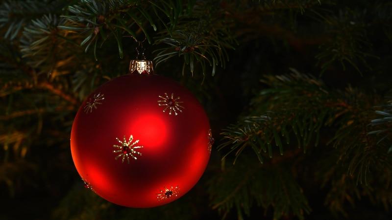 Weihnachtsbaum: Tanne oder Fichte?