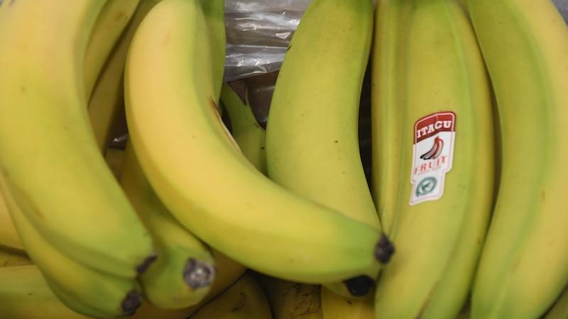Bananen sind sehr gut geeignet für ein gesundes, süßes Frühstück.
