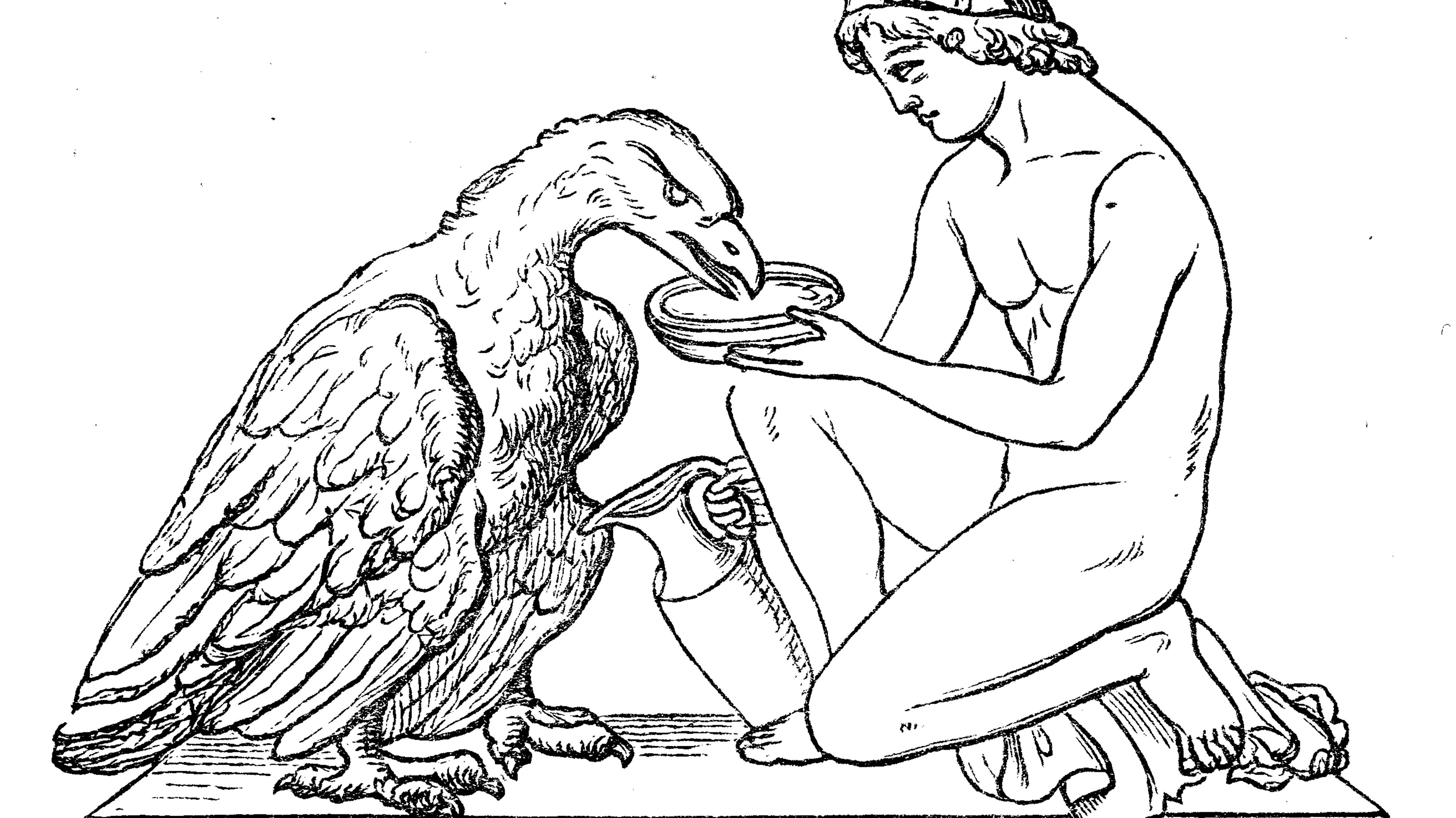 In der Griechischen Mythologie, zum Beisppiel in der Geschichte Ganymedes, hat der Adler eine besondere Bedeutung.