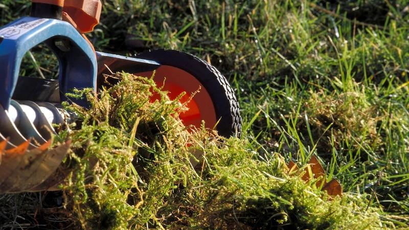Wann Sie Ihren Rasen vertikutieren sollten? April oder September sind ideal.