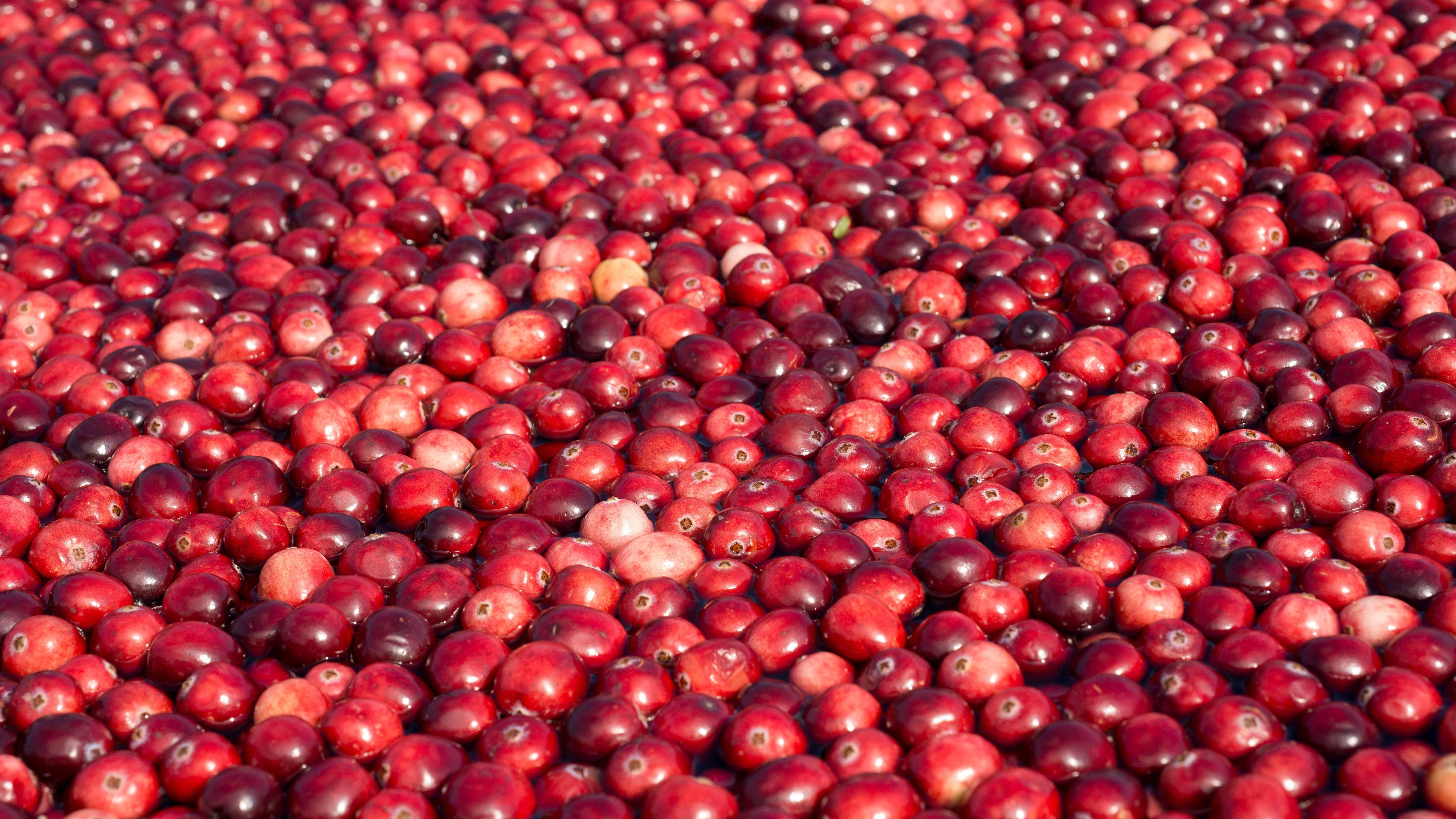 Mannose, ein Zucker, der gegen Blasenentzündung helfen kann,  ist auch in Cranberries enthalten.