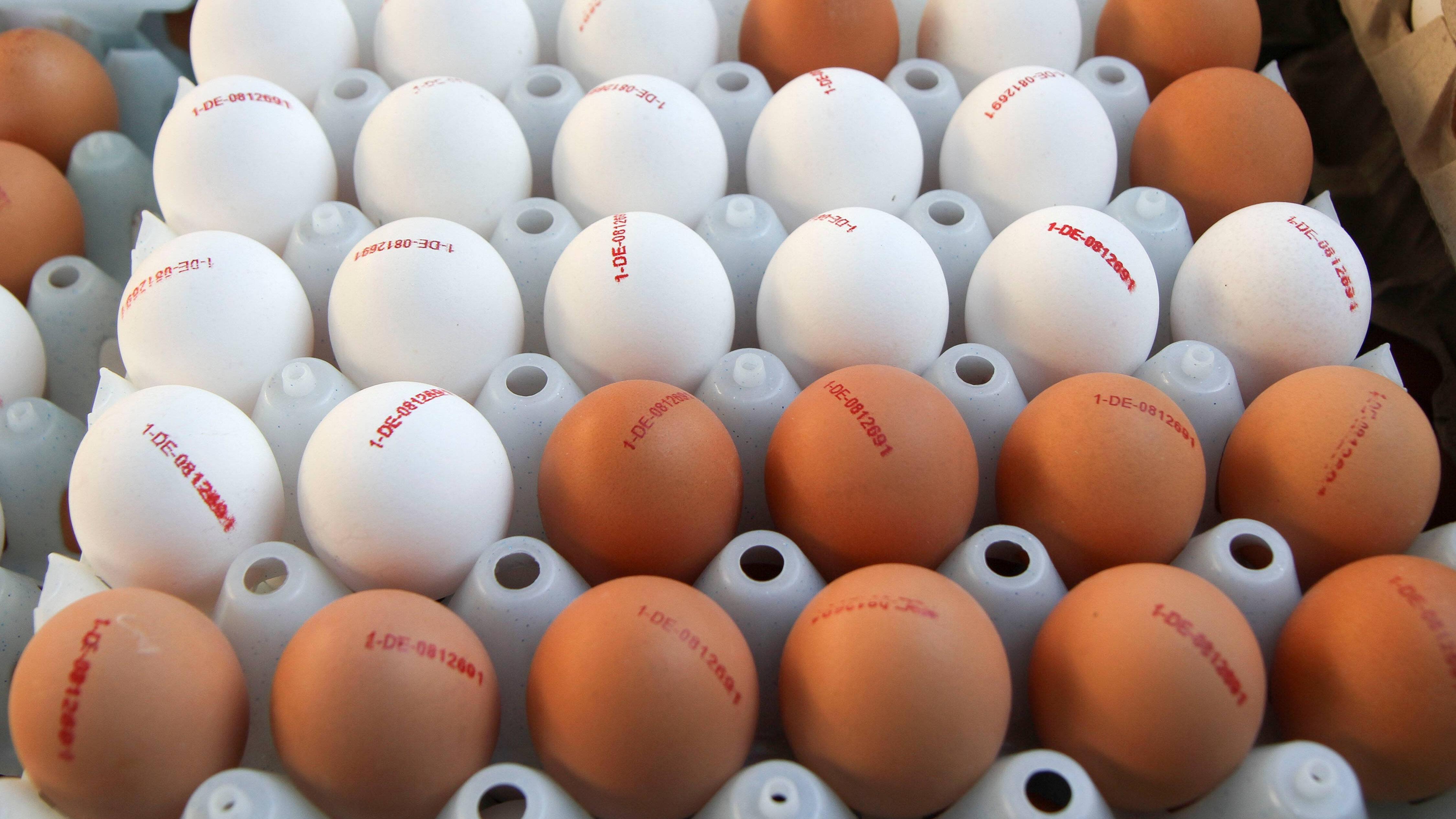 Eier können kühl gelagert werden.