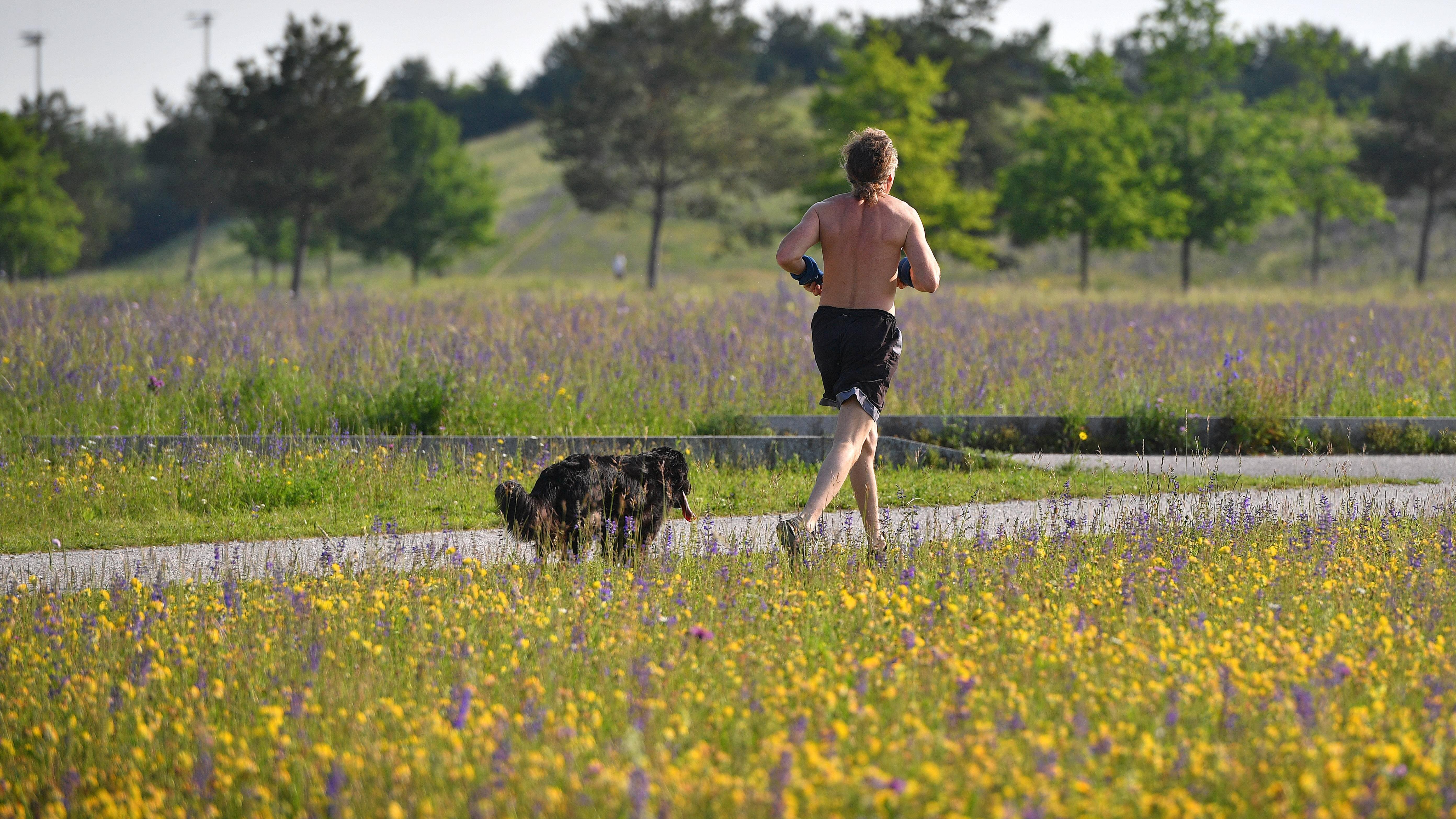 Sport mit Hund: Die besten Tipps