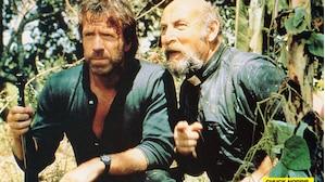 Chuck Norris heute: Kampfkünste und Karriere