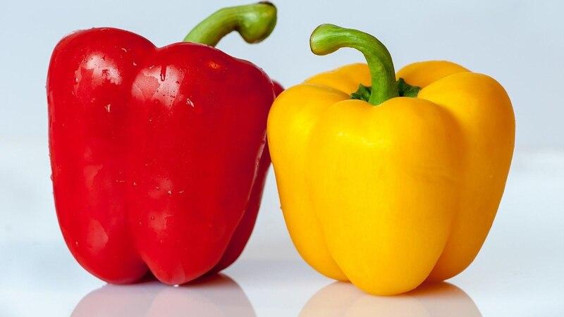Keimdauer von Paprika mit einfachem Trick verkürzen