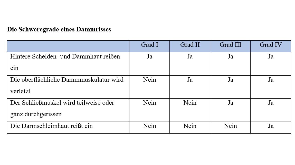 Ein Dammriss wird je nach Ausprägung in 4 verschiedene Schweregrade unterteilt.