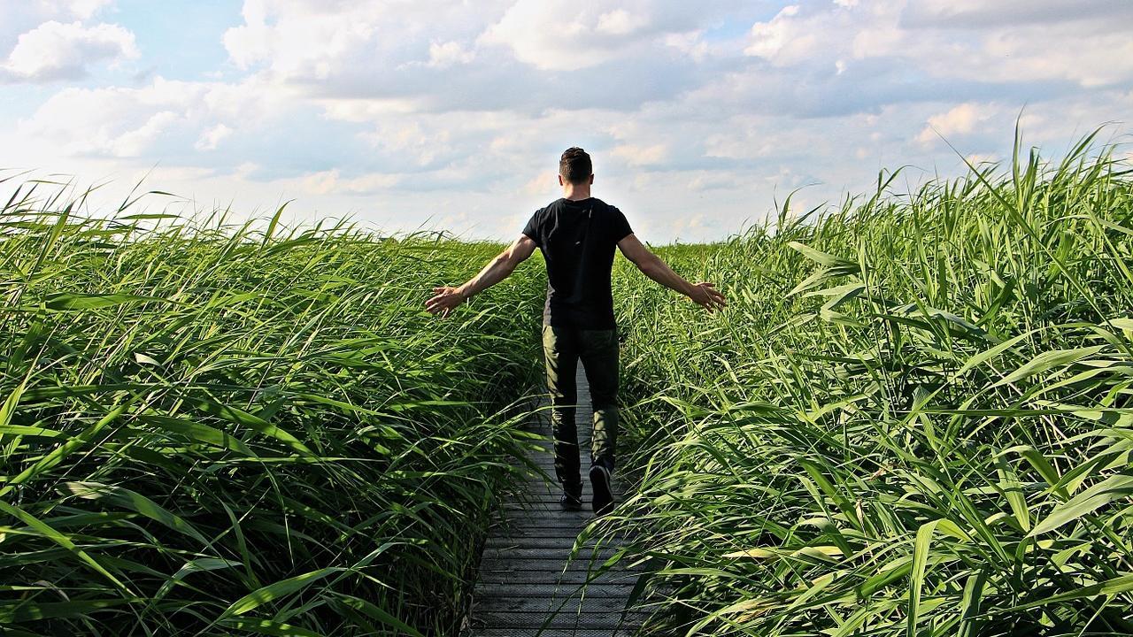 Wie viele Schritte am Tag sollten Sie gehen? Es ist zumindest gar nicht so schwer, zusätzliche Bewegung in den Alltag zu integrieren.