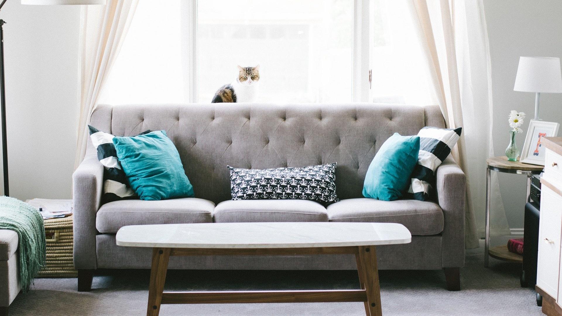 Sofa reparieren - Schaden erkennen und handeln: So geht's