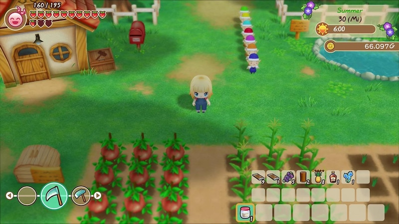 Story of Seasons - Friends of Mineral Town: Tipps & Tricks für Anfänger