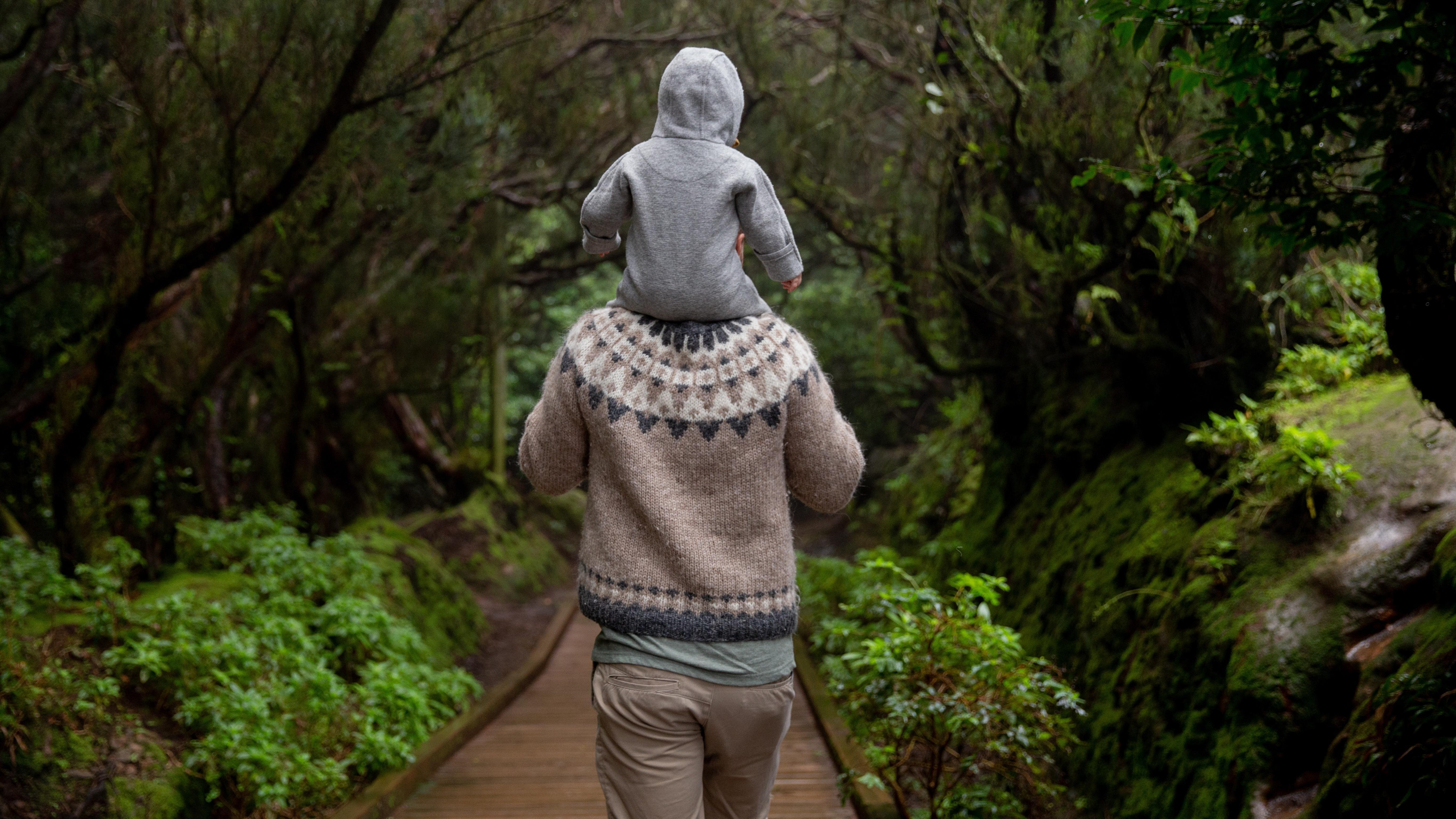 Shinrin Yoku - Eine japanische Naturtherapie: Alle Infos