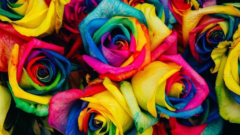Die verschiedenen Farben der Rosen-Motive sagen viel über die Bedeutung der Tattoos und den Menschen selbst aus.