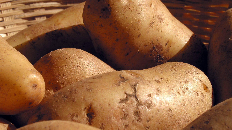Kartoffeln einfrieren - so geht`s