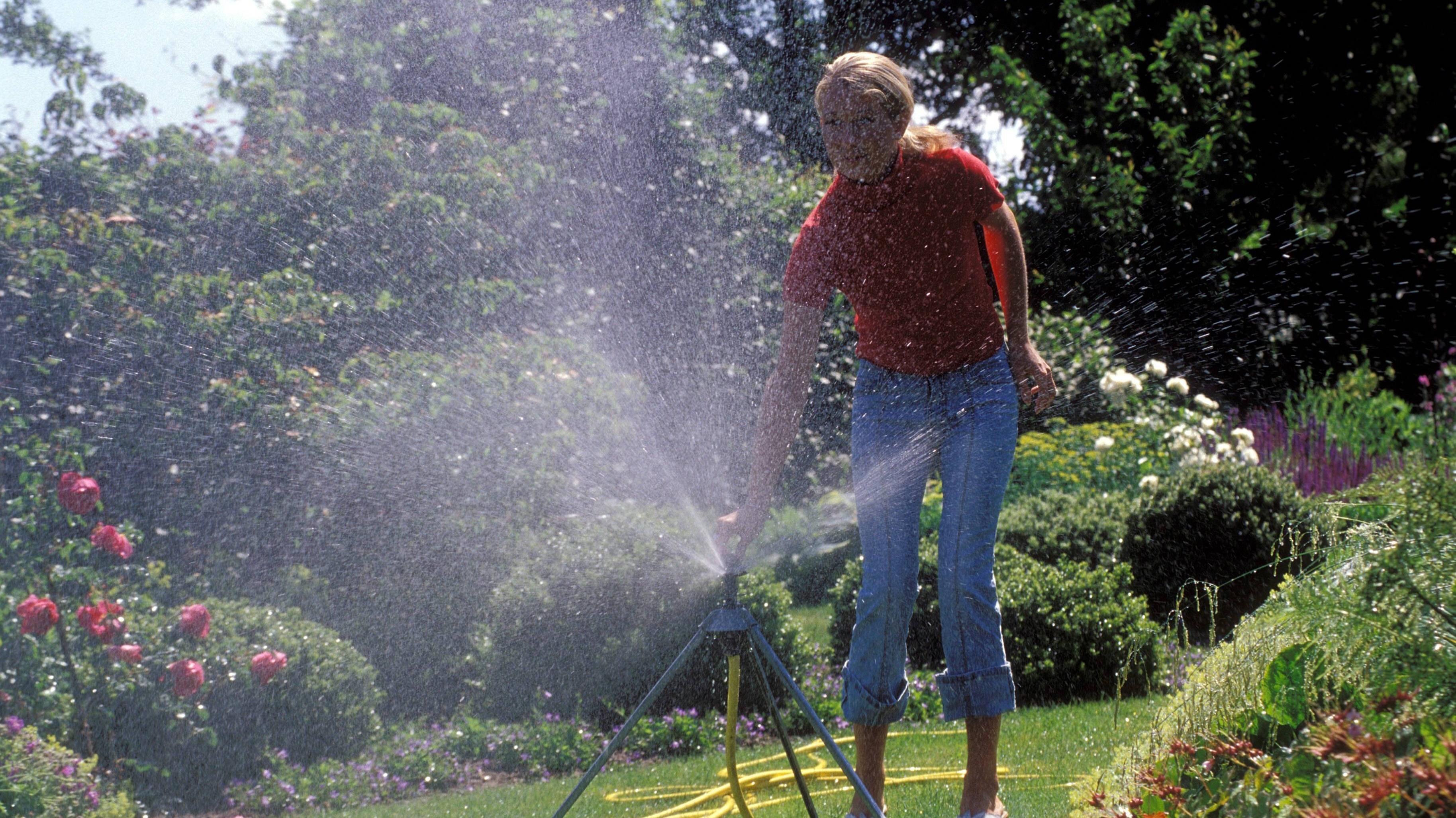 Rasen bewässern: Tipps und Hinweise zur Bewässerung