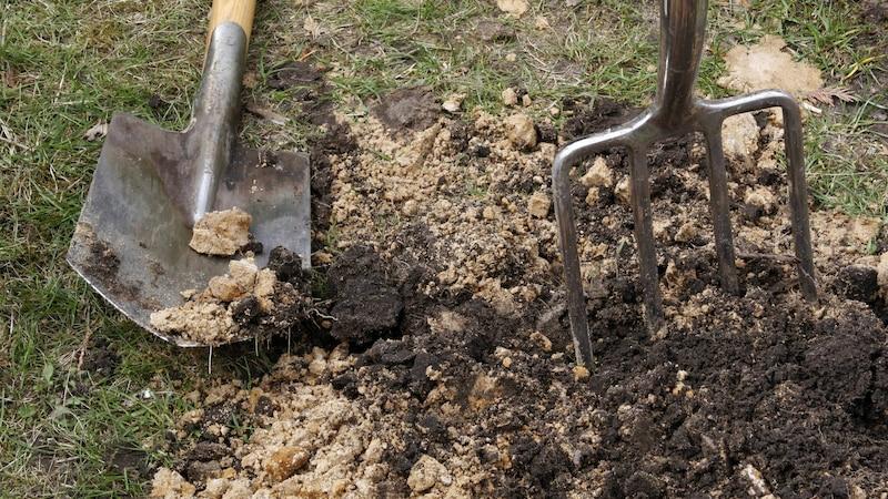 Holländern: Tipps zum richtigen Umgraben