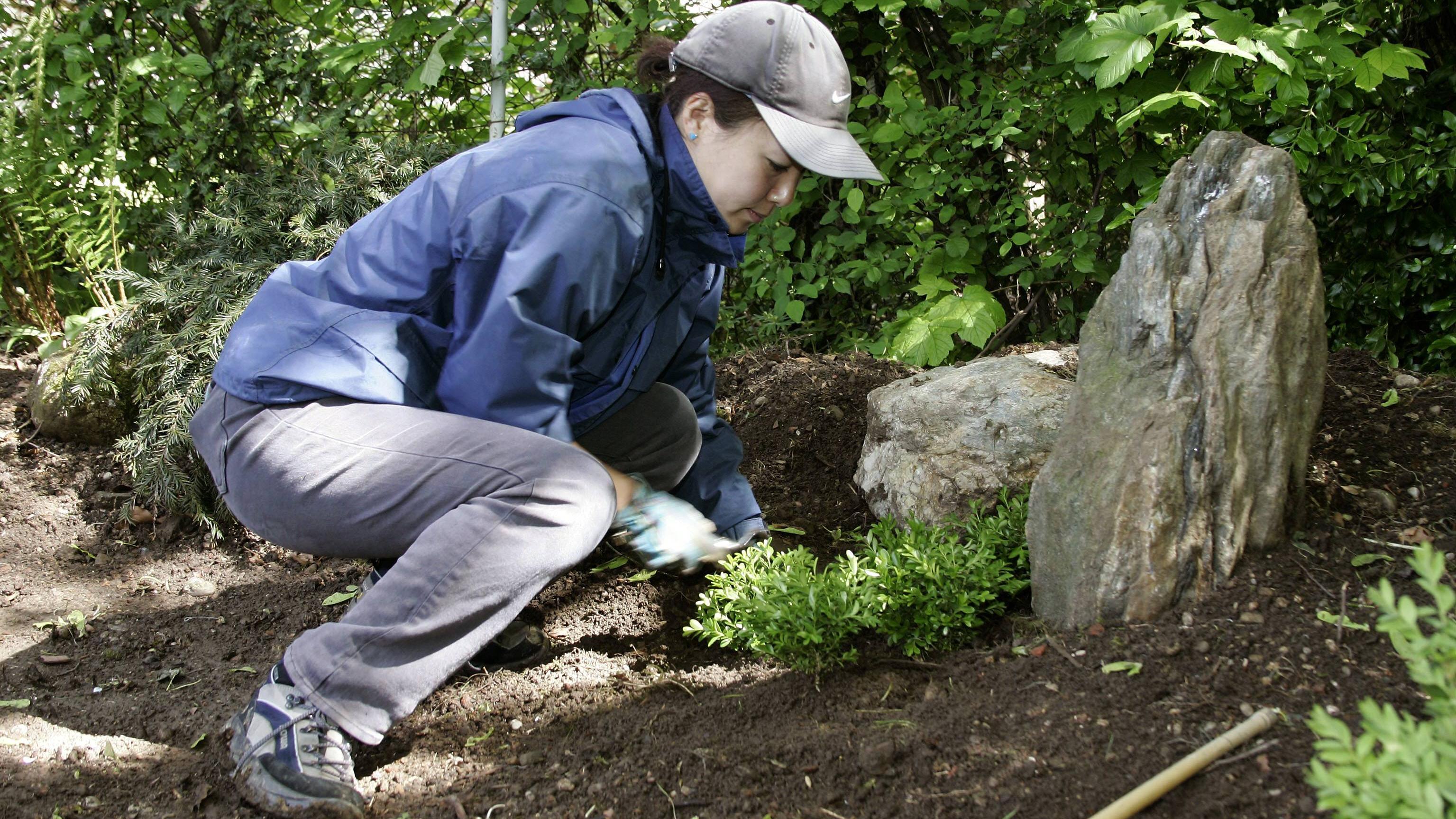 Boden sauer machen: Wann es sinnvoll ist und Tipps, wie's klappt