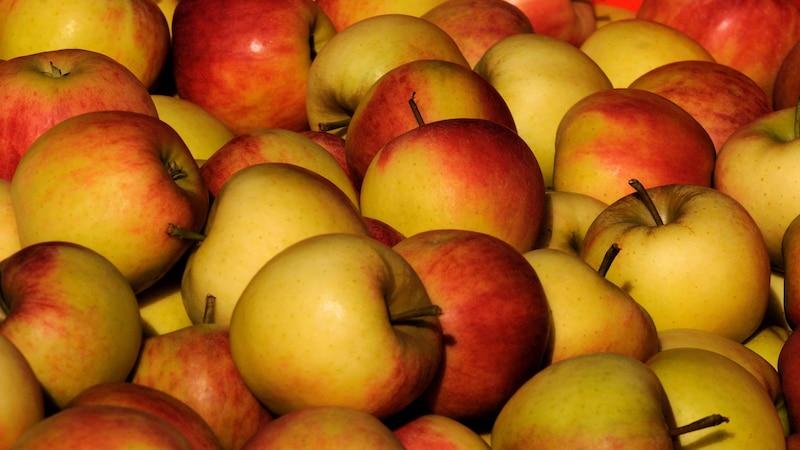 Äpfel müssen Sie pflücken. Beim Runterschütteln werden sie meist zu sehr beschädigt, um noch lagerbar zu sein.
