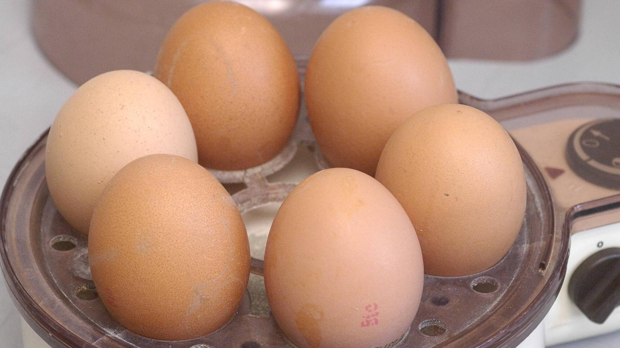 Wenn Sie einen Eierkocher benutzen, sollten Sie zunächst die Gebrauchsanweisung lesen.