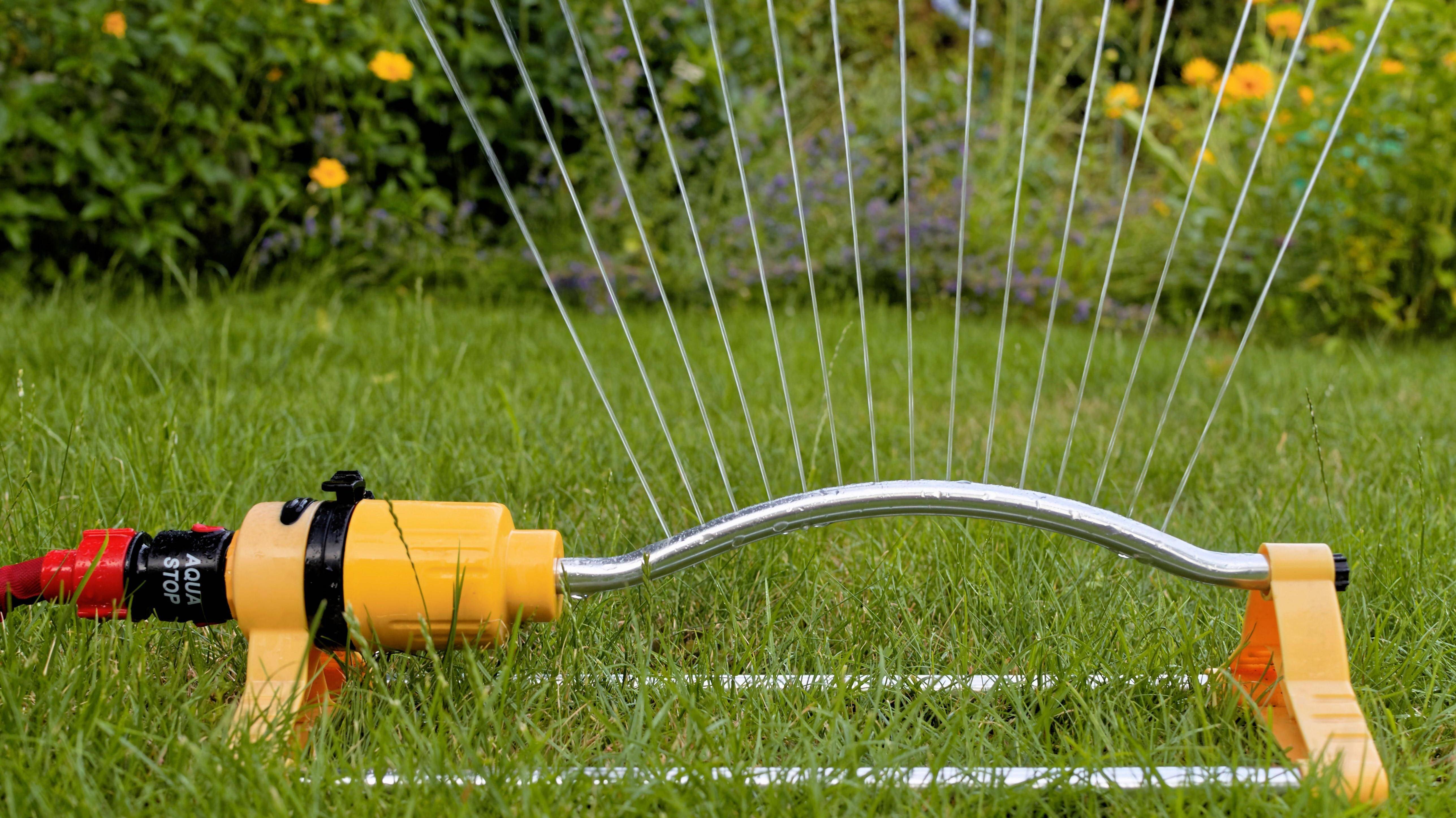 Rasen bewässern: Große Flächen am besten mit einem Rasensprenger