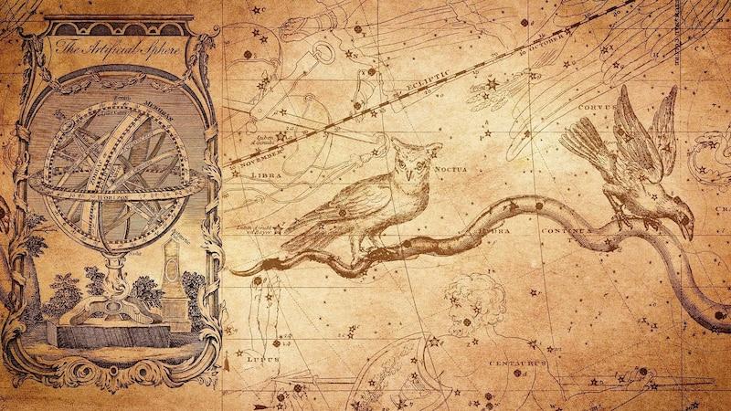 Das keltisches Horoskop dreht sich um Seelenbäume.