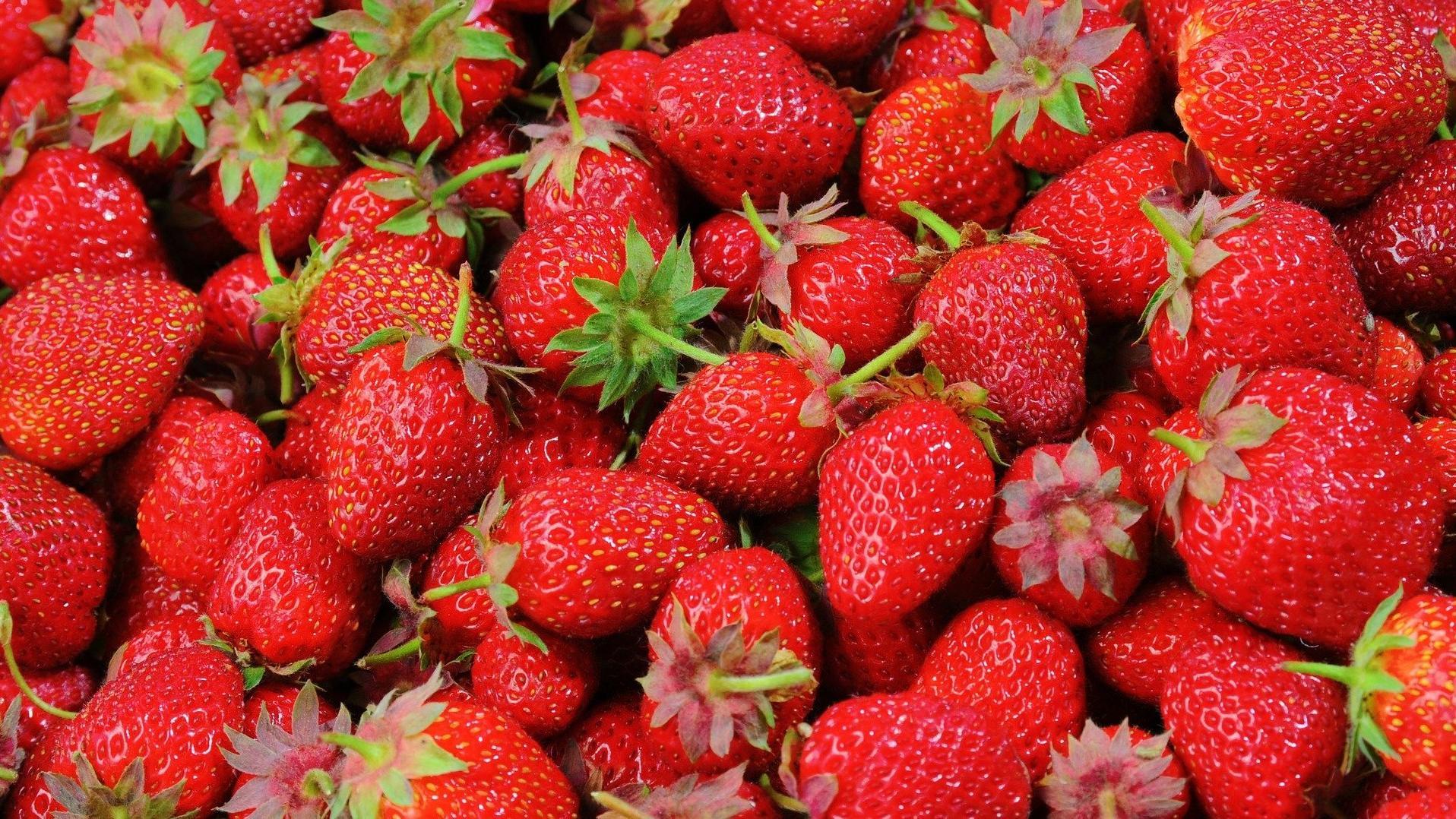 Erdbeeren richtig lagern - so bleiben sie lange frisch