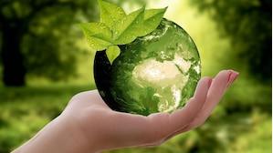 Plastikfreie Küche: Die besten Tipps & Ideen