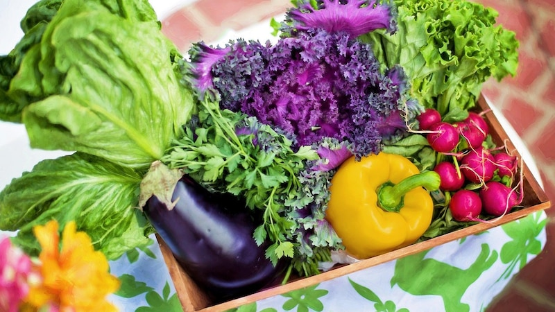 Eine vegane Ernährung bietet viele Vorteile.