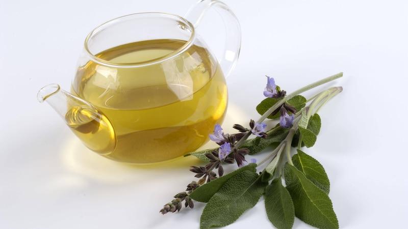 Salbei gegen Schwitzen: Tee am Abend hilft gegen Nachtschweiß