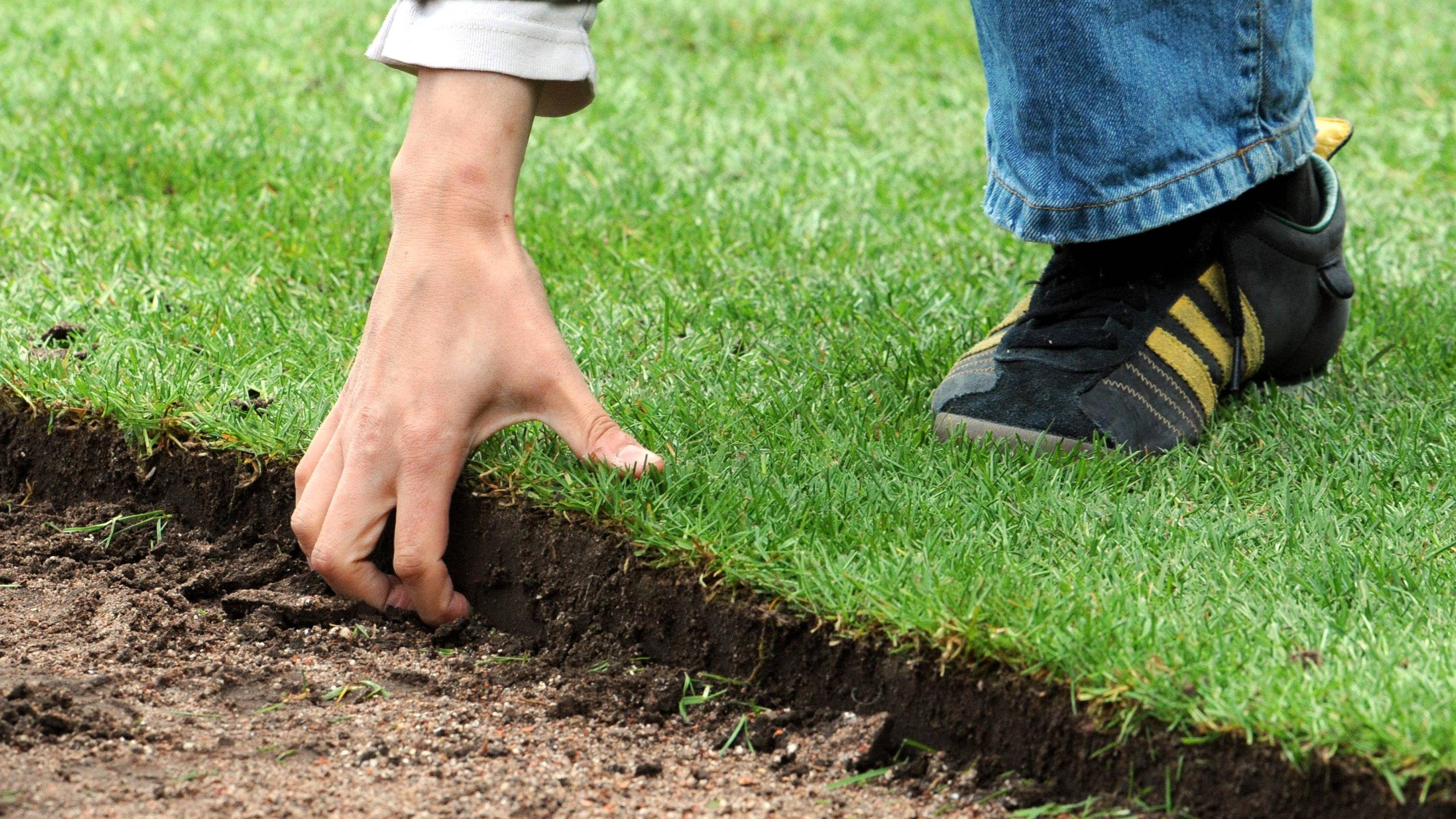 Die Grasnarbe entsorgen Sie kostenfrei über den Kompost.