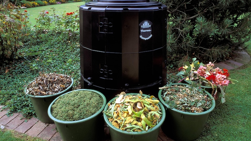 Zitruspflanzen können Sie bedenkenlos auf den Kompost werfen.