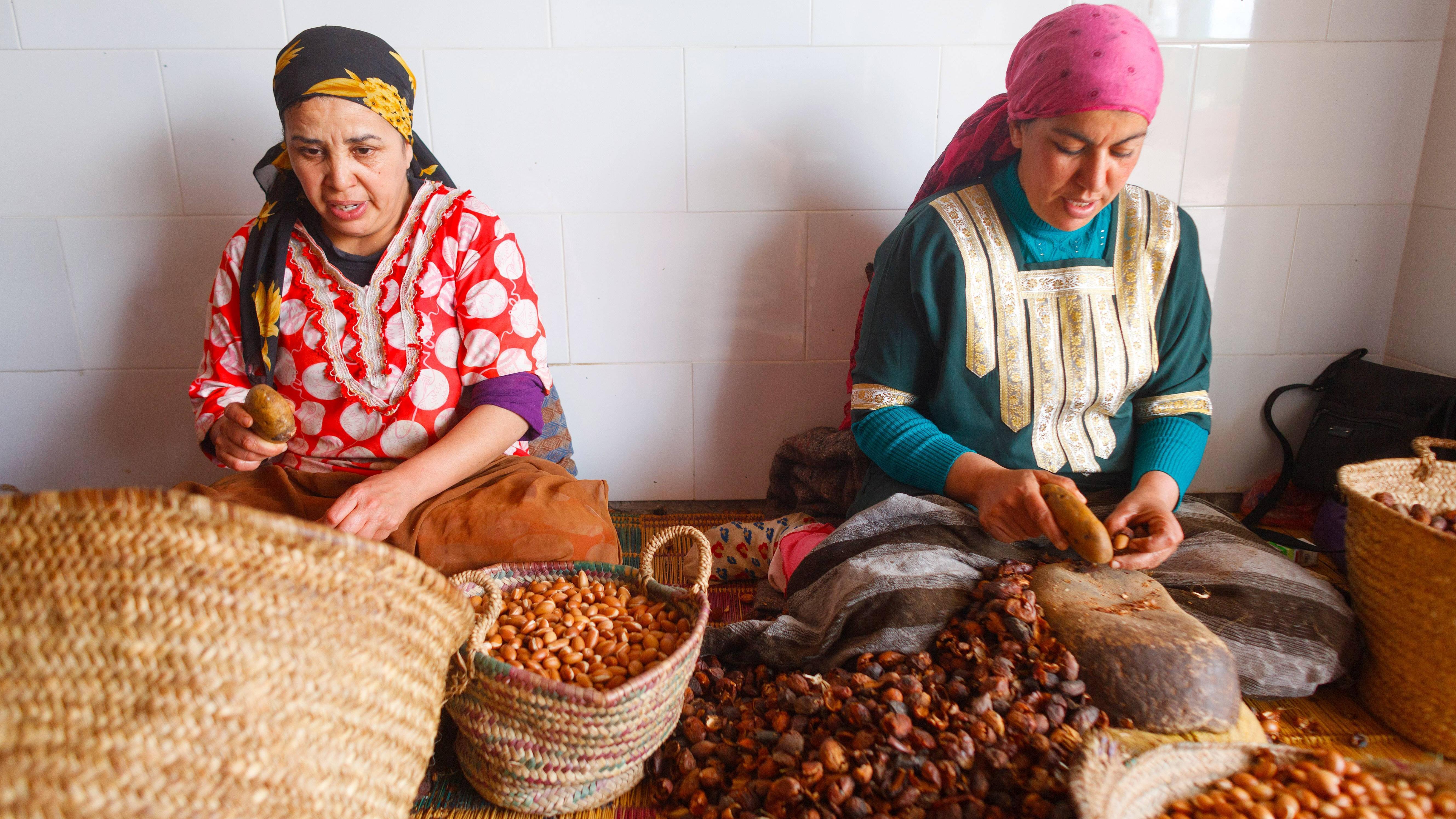 Berber bei der Ernte der Arganfrüchte.