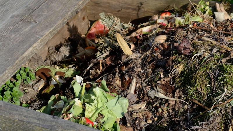 Komposter - was rein darf und was nicht, sollten Sie unbedingt beachten.