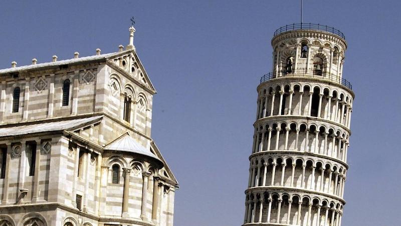 Wie der schiefe Turm von Pisa steht auch diese Art Penis etwas schief.