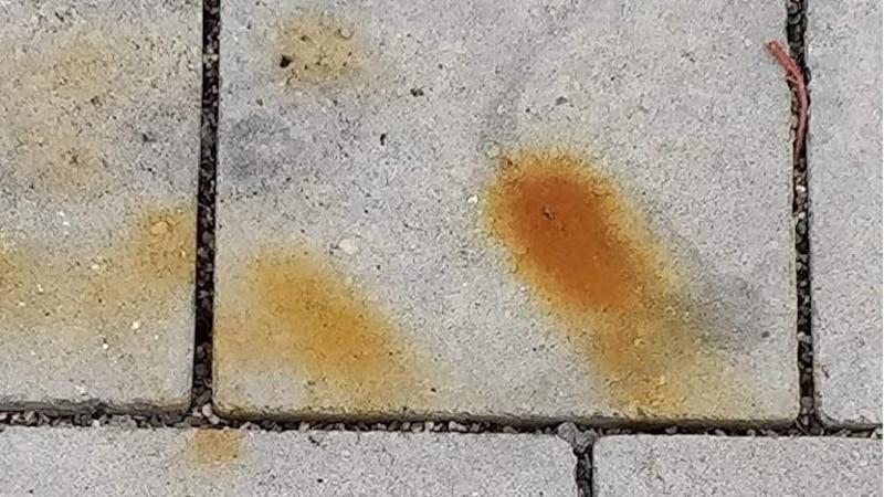 Rostflecken lassen sich mit einem Rostreiniger von Terrassenplatten entfernen.