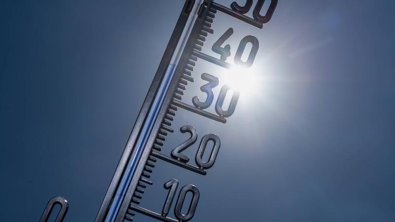 Wohnung kühlen ohne Klimaanlage: Hausmittel, Tipps & Tricks