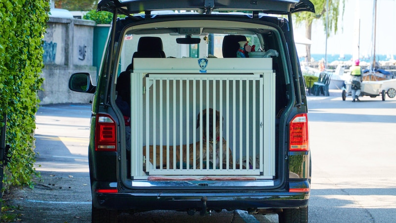 Wenn Sie Ihren Hund im Kofferraum transportieren möchten, dann kann eine Gitterbox eine gute Wahl sein.