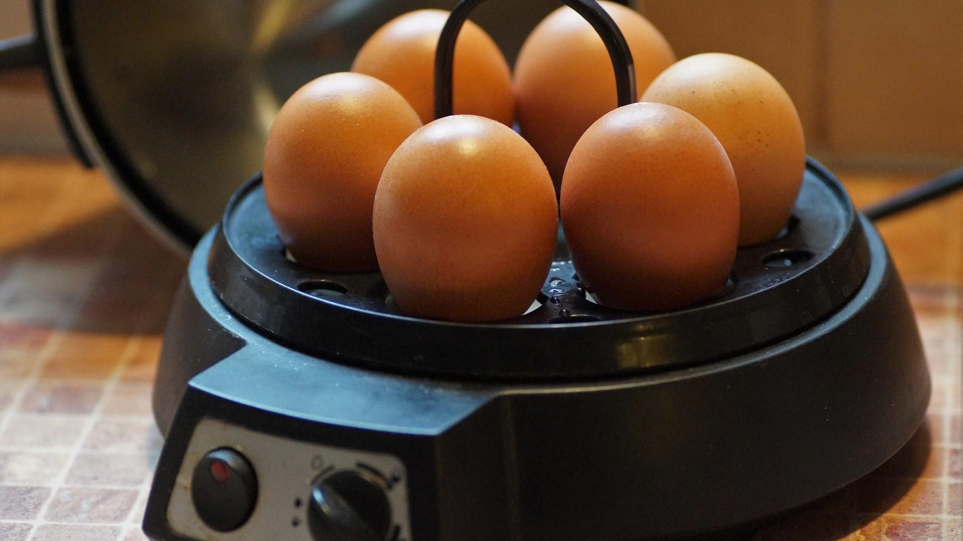 Reinigen und entkalken Sie Ihren Eierkocher regelmäßig.