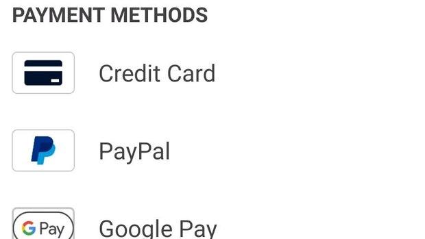 Diese Zahlungsmöglichkeiten stehen Ihnen zur Auswahl.