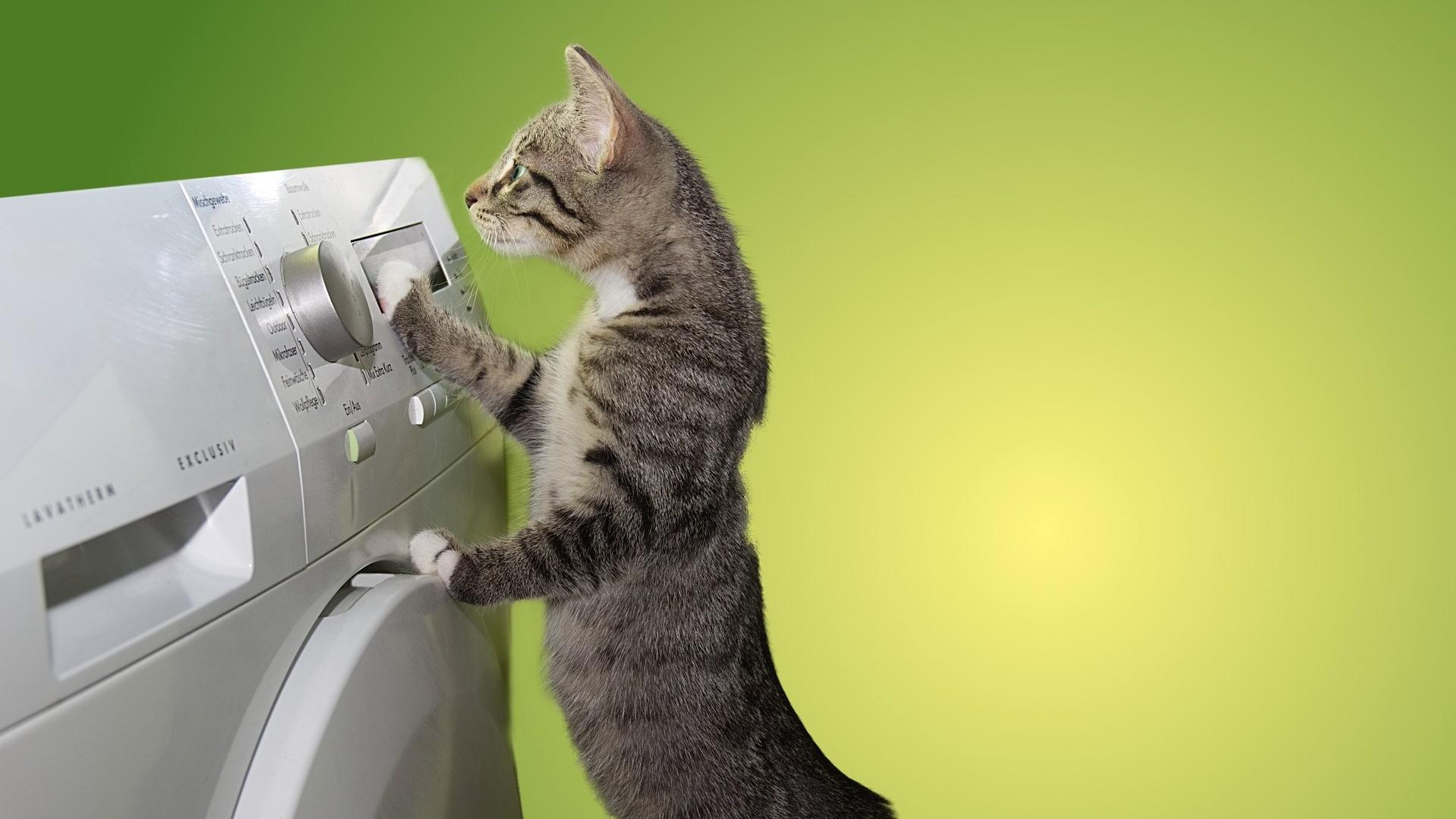 Kondenstrockner reinigen - die besten Tipps, wie Sie es sich leicht machen