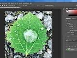 Bildbearbeitungsprogramme: Es gibt Alternativen zu Photoshop.