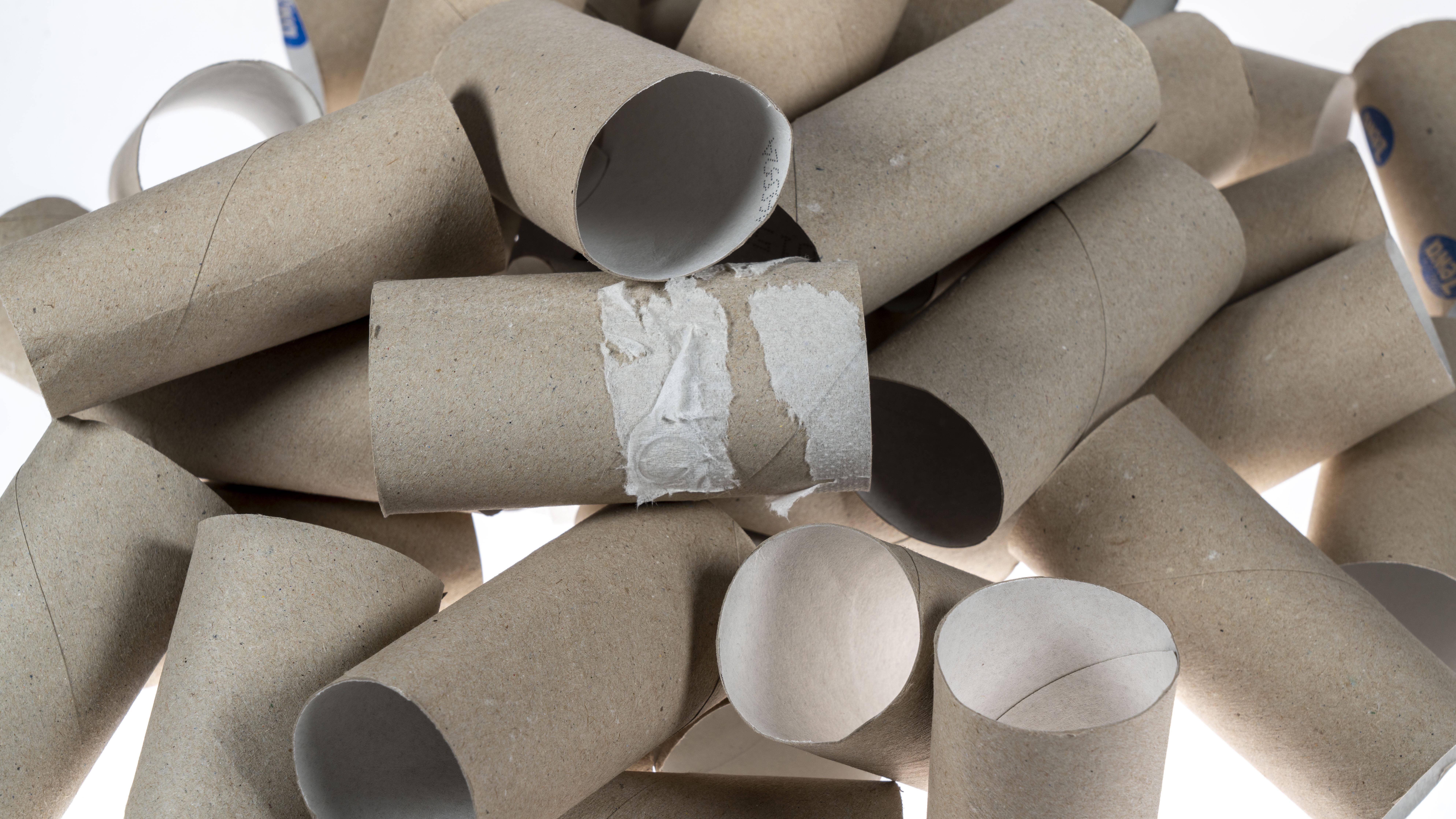 Toilettenpapierollen sind vielseitiger als erwartet.