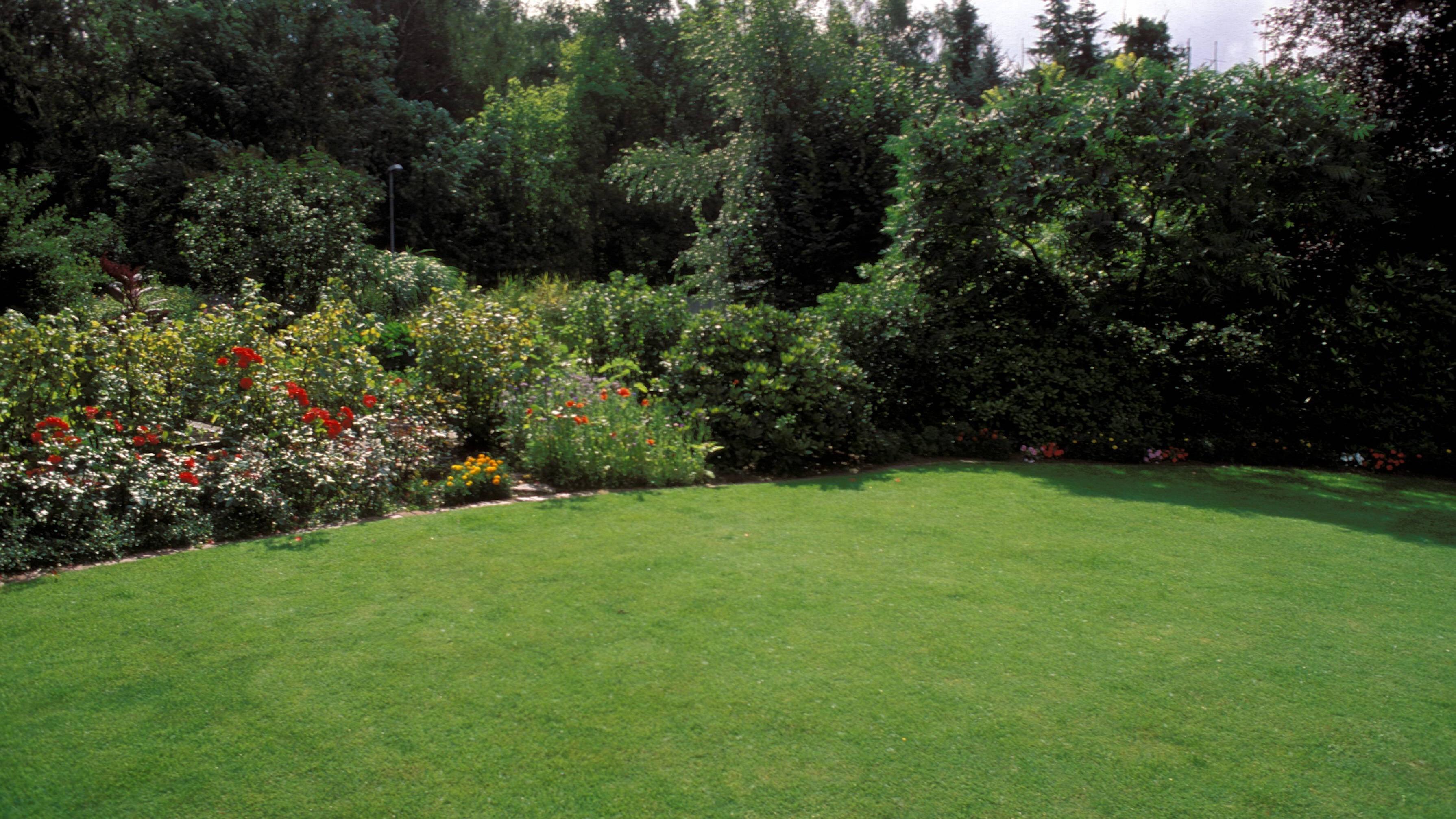 Die Rasenpflege im Sommer ist eine besondere Herausforderung.