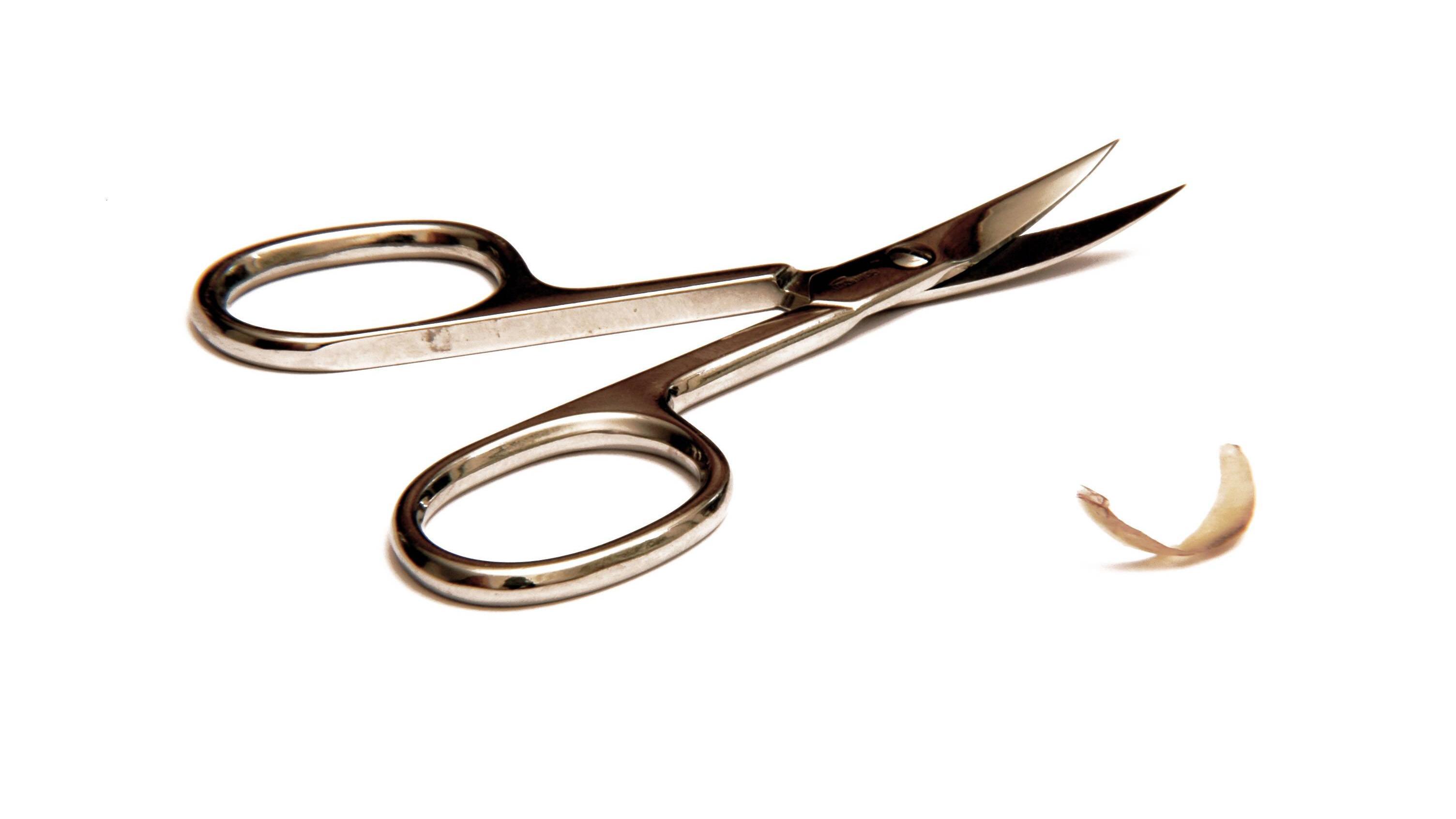 Ist der Fingernagel abgerissen, so hilft oft nur noch die Nagelschere.