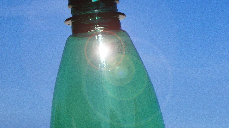 Mit einer Pflastikflasche bewässern Sie Ihre Pflanzen während Ihres Urlaubs mit ausreichend Wasser.